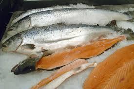Door vis eten stoppen met snurken
